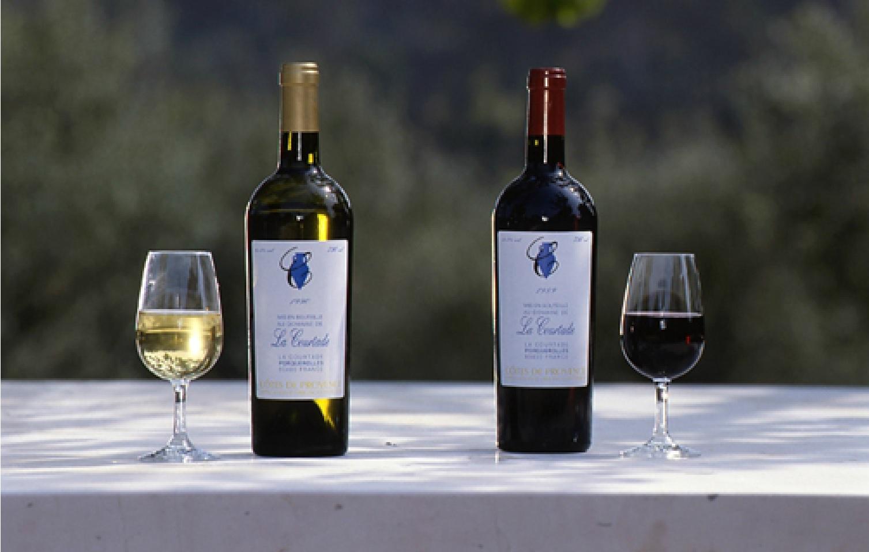 Pour apprendre à acheter ses bouteilles : achat-vin.fr