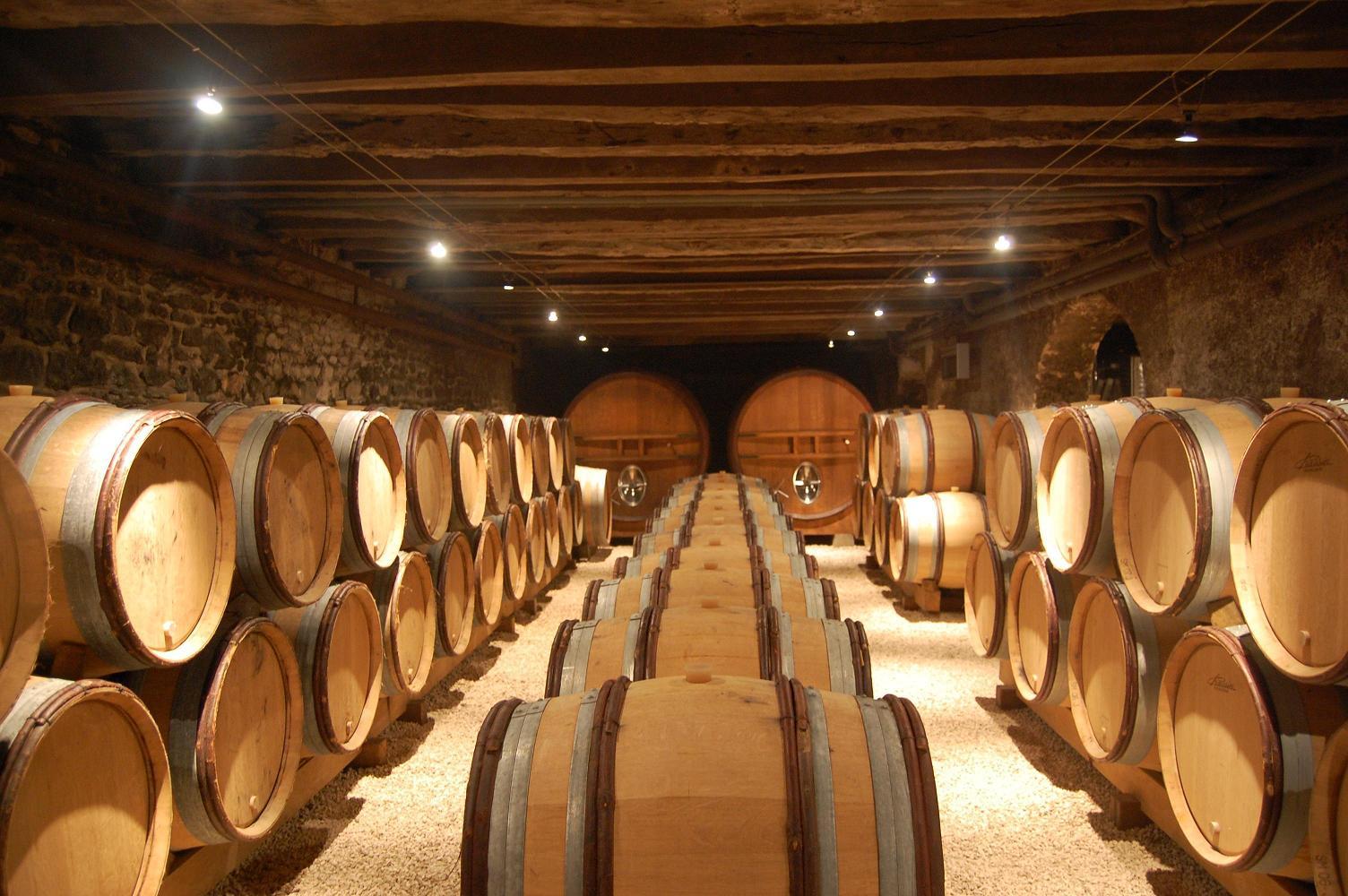 Le vin primeur, le vin dans toute sa douceur
