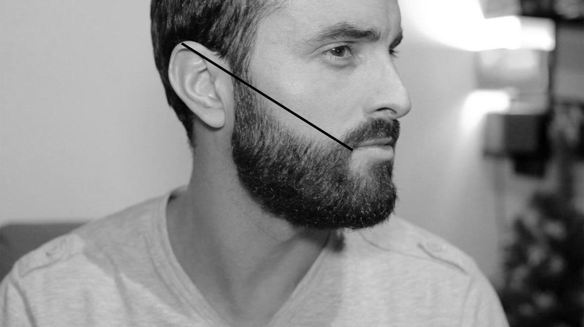 coloration barbe pour en modifier la teinte de base - Coloration Barbe